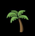 palmera-2