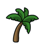 palmera-3