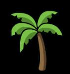 palmera-4