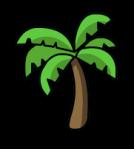 palmera-5